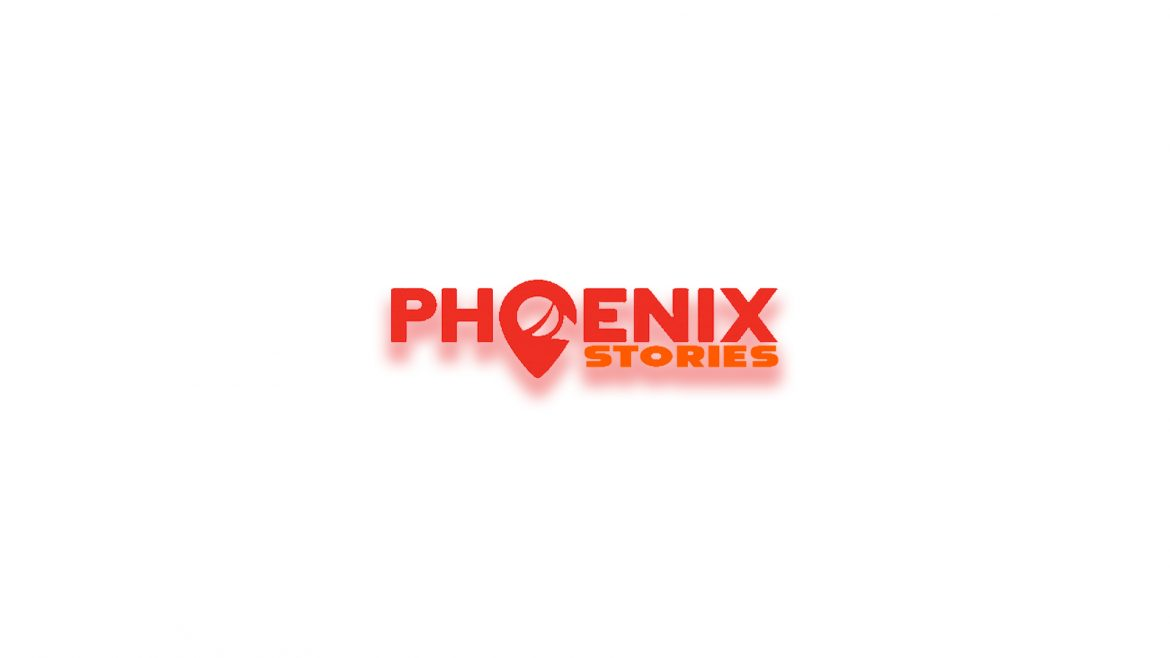 Introduction to Phoenix Stories